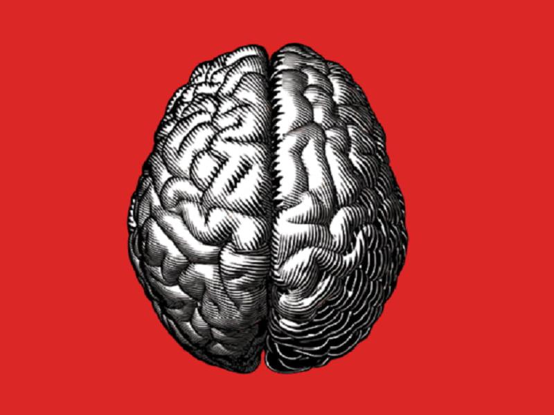 ضریب هوشی چیست؟ + آشنایی با طبقه بندی ضریب هوشی